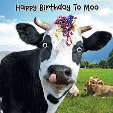 Cow Birthday Card Cow Streamers Birthday Card Happy Birthday To Moo 3d Goggly