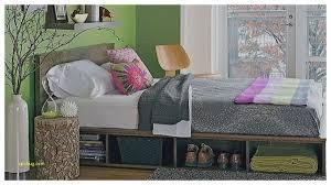 Platform Bed With Storage Underneath Storage Bed Lovely Building A Bed With Storage Underneath