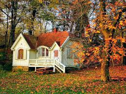 houses beautiful small forest house peaceful rest calm