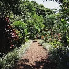 Botanical Garden Sydney by Royal Botanic Gardens 362 Photos U0026 133 Reviews Park U0026 Forests