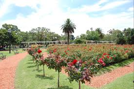 palermo rose garden buenos aires argentina