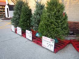 home depot trees real lights decoration