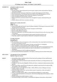 sle resume for business analysts duties of executor of trust claims analyst resume sles velvet jobs