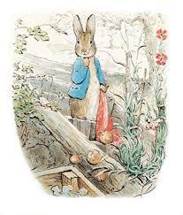 rabbit merchandise traditional thursdays the tale of rabbit neely s news