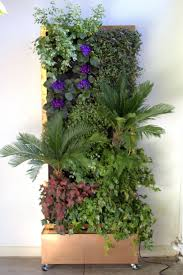 53 best vertical garden walls images on pinterest vertical