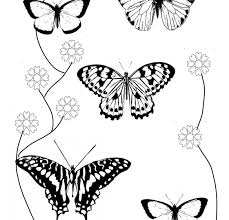 coloring page butterfly monarch coloring pages butterfly and flower of wings butterflies for adults