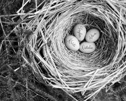 personalized bird nest art