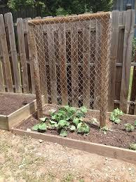 Make Your Own Cucumber Trellis The 25 Best Cucumber Trellis Ideas On Pinterest Permaculture