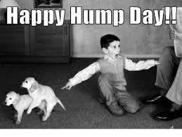 Happy Hump Day Memes - happy hump day hump day meme on sizzle