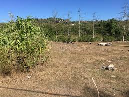 500 sqm land near bingin beach hak milik