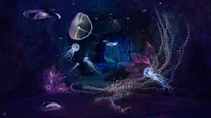 nature queen wallpapers jellyfish tag wallpapers jellyy purple white sea jellyfish queen