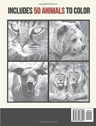 amazon animals grayscale coloring book 9781539933441 jade