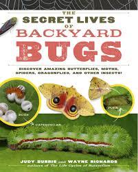 amazon com the secret lives of backyard bugs discover amazing