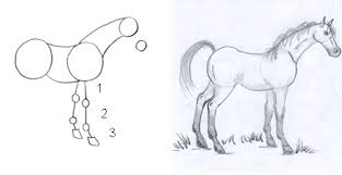 drawn horse draw a pencil and in color drawn horse draw a