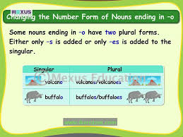 english grammar learn singular and plural nouns youtube