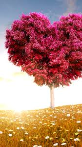 cute fall wallpaper for desktop 30 best cute u0026 cool iphone 6 wallpapers backgrounds in hd quality