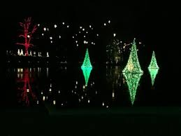 net christmas lights for small bushes a longwood christmas lights up the night for the holidays here by