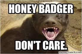 Honeybadger Meme - badger