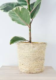 transform an old plant pot into a trendy sisal planter