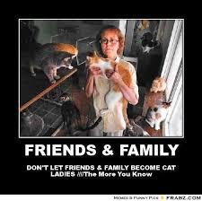 Dog Lady Meme - crazy dog lady meme 28 images 345 best images about crazy cat