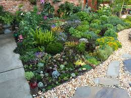 fabulous landscaping help with cozy backyard landscaping ideas