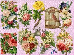 http www imagedite com 2016 07 clipart png vintage flowers