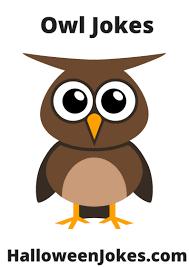 owl jokes owl humor for halloween jokes about owls