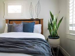 best plants for bedroom leaf love the best plants to grow in your bedroom intended for 28