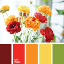 Warm Colors 2088 Best Colors Images On Pinterest Colors Color Combinations