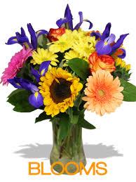 balloon delivery la san diego ca florist flowers flower delivery la jolla