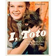 belgian malinois in movies belgian malinois movies reel dogs