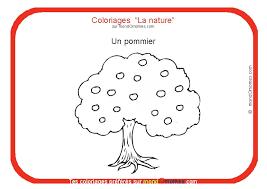 Coloriage sur la nature  Coloriage Pommier