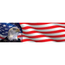 Bald Eagle And American Flag Vantage Point Concepts Eagle Head American Flag Original Series