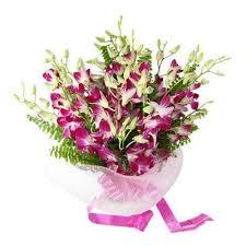 Flower Orchid Flower Galaxy