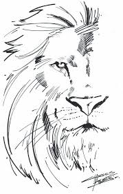 25 lion drawing ideas lion art lion painting