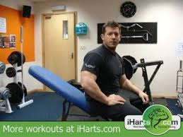 Triceps Bench Dips Tricep Bench Dips Hq By Iharts Com Dailymotion