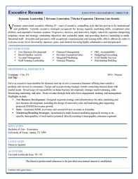 executive resume templates free executive resume templates resume template executive for free