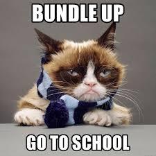 Winter Meme Generator - bundle up go to school grumpy cat winter meme generator