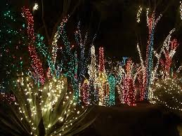 Christmas Light Ideas by Elegant Christmas Outdoor Lights With Colorful Candy Cane Lighting