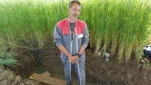 chambre d agriculture franche comté gérer la fertilité des sols en agriculture biologique rfi