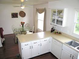 Benjamin Moore Paint For Cabinets Kitchen Endearing Benjamin Moore Oc 17 White Dove Kitchen