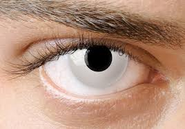 crazy white halloween contact lenses clearlycontacts ca