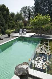 Backyard Swimming Ponds by Natural Swimming Ponds Yahoo Search Results Garden Ideas