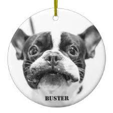 bulldog ornaments keepsake ornaments zazzle