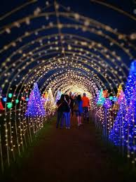santa rosa christmas lights witness the christmas magical field of lights in solenad nuvali