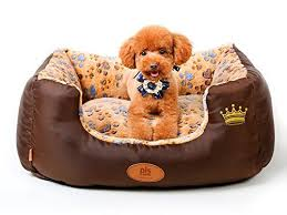 Dog Beds With Cover Best 25 Bolster Dog Bed Ideas On Pinterest Diy 3d Bag Diy