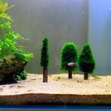 simulation xmas moss christmas tree plant grow aquarium tank