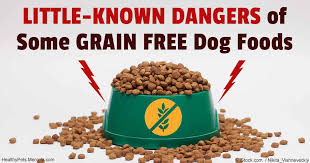 should you feed your pet grain free or not