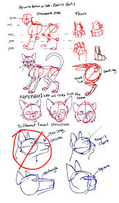 how to draw a cat part 1 by kytes on deviantart