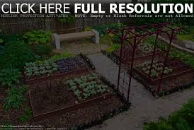 perfect vegetable garden layout vegetable garden plans for beginners home outdoor decoration